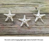 Decorative starfish cloth hangers - pack of 3,bathroom decor,bedroom decor,living room accessories,natural lover,nursery decor,beach bathroom theme,Nursery picture hanging,Kids room decor,Wall hanging