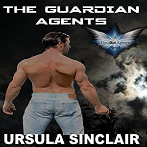 The Guardian Agents Audiobook