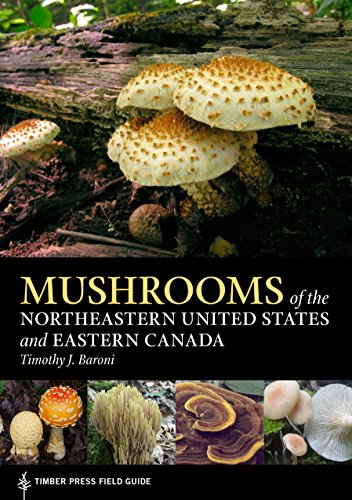 (Mushrooms of the Northeastern United States and Eastern Canada (A Timber Press Field Guide) )