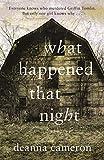What Happened That Night (A Wattpad Novel)