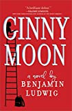 img - for Ginny Moon: A Novel book / textbook / text book