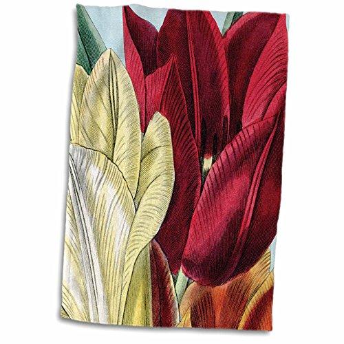 3dRose PS Vintage - Vintage Tulip Flowers - 12x18 Hand Towel (twl_203816_1)