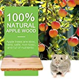 Chinchilla Wood Ledge 2Pcs Natural Apple Wooden
