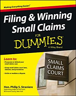 Filing and Winning Small Claims For Dummies by [Straniere, Philip]