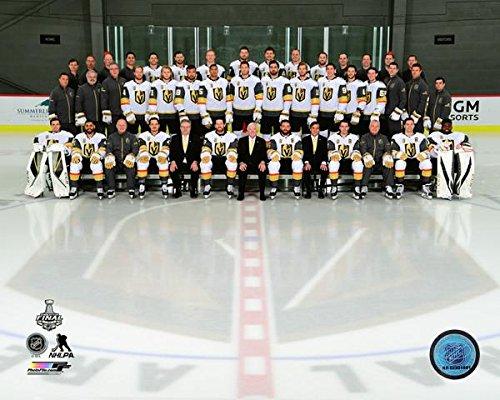 Vegas Golden Knights 2017-2018 Team Photo (Size: 8
