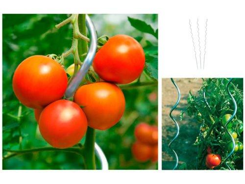 H&S 10 Set Tomate spieral Varilla 150 cm: Amazon.es: Jardín