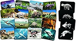 Roylco 59253 What\'s Inside Dinosaur X-Rays, Grade: Kindergarten to 5 (Pack of 16)