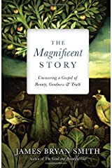 The Magnificent Story: Uncovering a Gospel of Beauty, Goodness, and Truth (Apprentice Resources) Hardcover