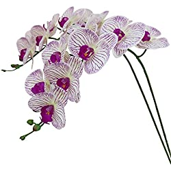 Htmeing 38 Inch Artificial Phalaenopsis Flowers Branches Real Touch (Not Silk) Orchids Flowers for Home Office Wedding Decoration,Pack of 2 (Purple Stripes)