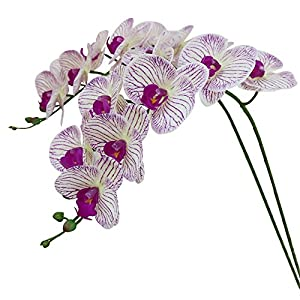 Htmeing 38 Inch Artificial Phalaenopsis Flowers Branches Real Touch (Not Silk) Orchids Flowers for Home Office Wedding Decoration,Pack of 2 5