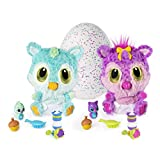 HATCHIMALS Hatchibabie Amazon Exclusivo Chipadees Peluches, Multicolor