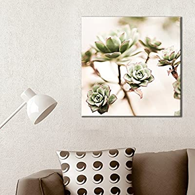 Square Canvas Wall Art - Retro Style Succulent Plant - Giclee Print Gallery Wrap Modern Home Art Ready to Hang - 24x24 inches