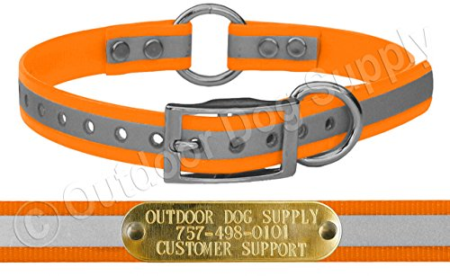 (Outdoor Dog Supply 3/4
