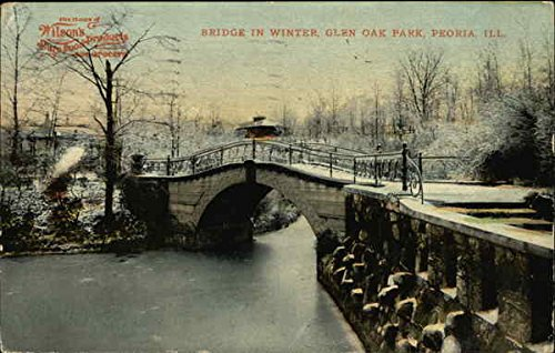 Bridge in Winter, Glen Oak Park Peoria, Illinois Original Vintage Postcard (Park Oaks Winter)