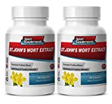 Product review for antioxidant diet - ST. JOHN'S WORT EXTRACT - gingko biloba with ginseng - 2 Bottles (120 Capsules)