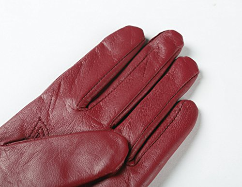 Ambesi Classic Women's Cashmere Lined Nappa Leather Winter Long Gloves Wine S