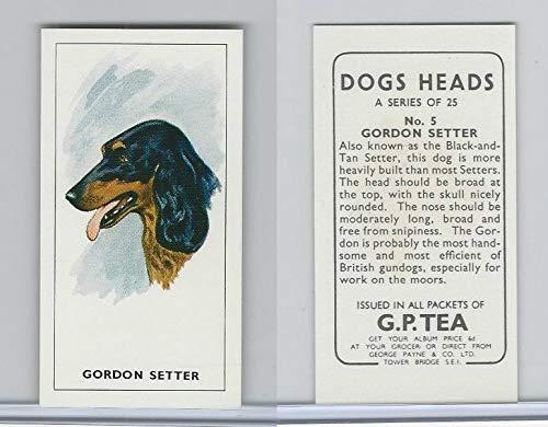 G0-0 G.P. Tea, Dogs Heads, 1963, 5 Gordon Setter