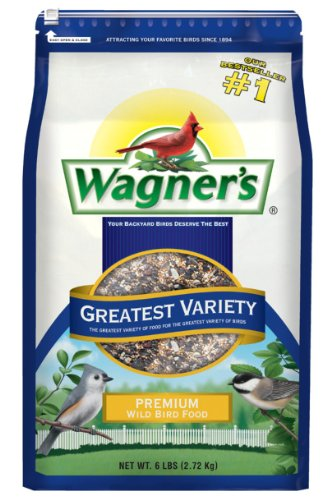 Cheapest bird seed