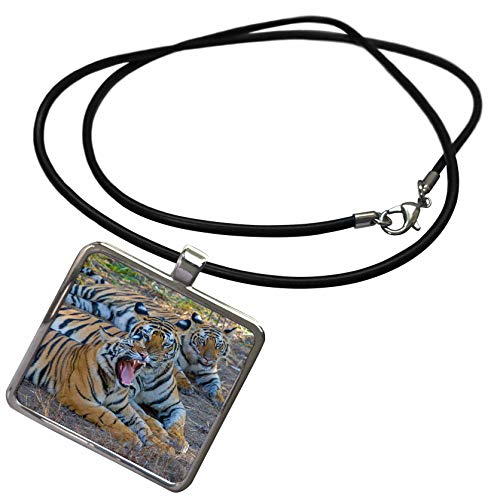 - 3dRose Danita Delimont - Tigers - Bengal Tigers, Bandhavgarh National Park, India - Necklace with Rectangle Pendant (ncl_312704_1)