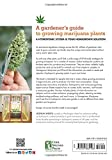 Homegrown Marijuana: Create a Hydroponic Growing