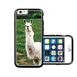 RCGrafix Brand White Llama On Grass iPhone 6 Case - Fits NEW Apple iPhone 6 by lolosakes