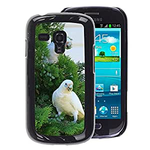 Snap-on Series Teléfono Carcasa Funda Case Caso para Samsung Galaxy S3 MINI 8190 , ( Beautiful White Cocatoo Parrot )