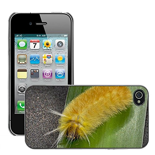 Bild Hart Handy Schwarz Schutz Case Cover Schale Etui // M00135650 Insect Caterpillar Yellow Hairy // Apple iPhone 4 4S 4G
