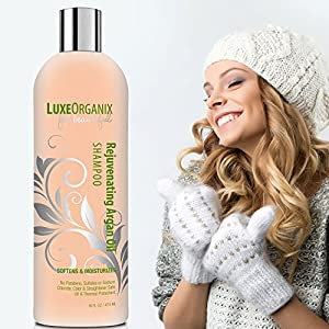 Moroccan Argan Oil Shampoo, SLS Sulfate Free + Safe for Color Treated, Keratin Treated Hair; Best for Damaged, Dry, Curly or Frizzy Hair - Thickening for Fine / Thin Hair (Made in USA) (16 oz)