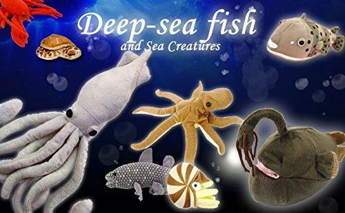 51rlBhAnwtL - Hamee Sea Creature Giant Squid Realistic Plush Doll (White / 76 cm)