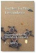 Turtles Turtles Everywhere - Loggerhead Sea Turtles: Loggerhead Turtles hatching in Australia (Adventures in Australia)