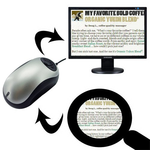 ViSee Electronic Digital Video Magnifier for TV: Visual/Reading Aide (Best Crt Monitor Ever)