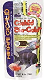 Hikari 8.8-Ounce Cichlid Bio-Gold and Floating Pellets for Pets, Mini