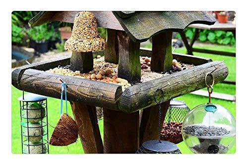 - Tree26 Indoor Floor Rug/Mat (23.6 x 15.7 Inch) - Bird House Bird Table Feeding Station Bird Food