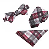 Ainow Mens Fashion Polyster Skinny Neck ties and Bowtie Pocket Square 3pcs Set (Set20 Burgundy Black White Plaid)