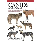 Canids of the World: Wolves, Wild Dogs, Foxes, Jackals, Coyotes, and Their Relatives (Princeton Field Guides, 135)
