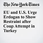 EU and U.S. Urge Erdogan to Show Restraint after Coup Attempt in Turkey | James Kanter