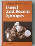 Fossil and Recent Sponges, J. Reitner, 0387525092