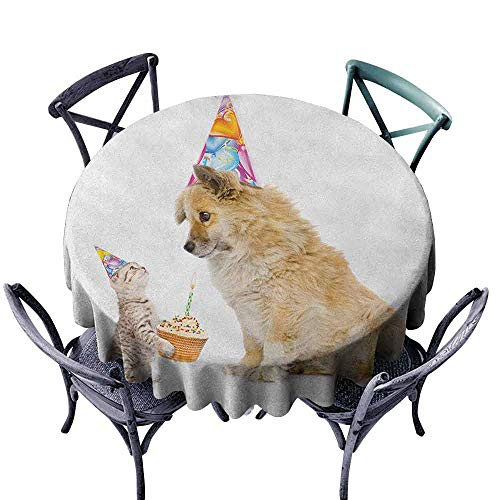 ScottDecor Tulle Round Tablecloth Picnic Cloth Kids Birthday,Cat and Dog Domestic Animals Human Best Friend Party with Cupcake and Candle, Multicolor Diameter 70