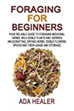 Foraging for Beginners: Your Reliable Guide to Foraging Medicinal Herbs, Wild Edible Plants and Berries (medical herbs,  foraging books, wildcrafting)