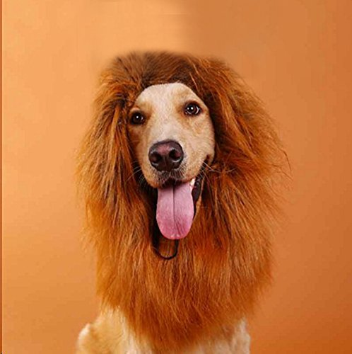 HuiSiFang Lion Mane Wig for Pet Costume Dog and Cat Adjustable with Ears for Halloween Christmas Easter Festival Party Activity Brown & Coffe