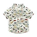 BOBORA Boys Summer Short Sleeve Dinosaur Printed T-Shirt Kids Polo Shirt 1-6Years Old