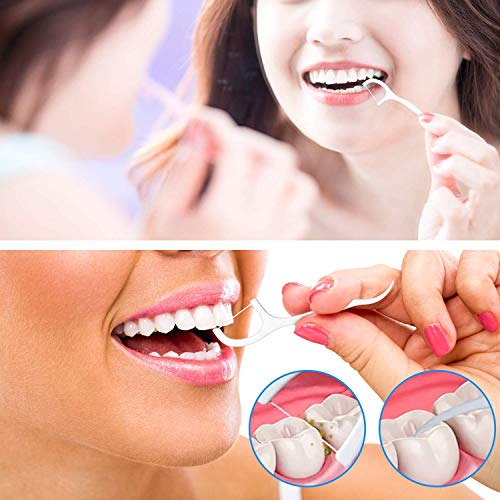 Dental Floss Picks High Toughness Toothpicks Sticks 250pcs with Portable Cases and 100pcs BrushPicks Interdental Toothpicks Perfect for Family,Hotel,Travel