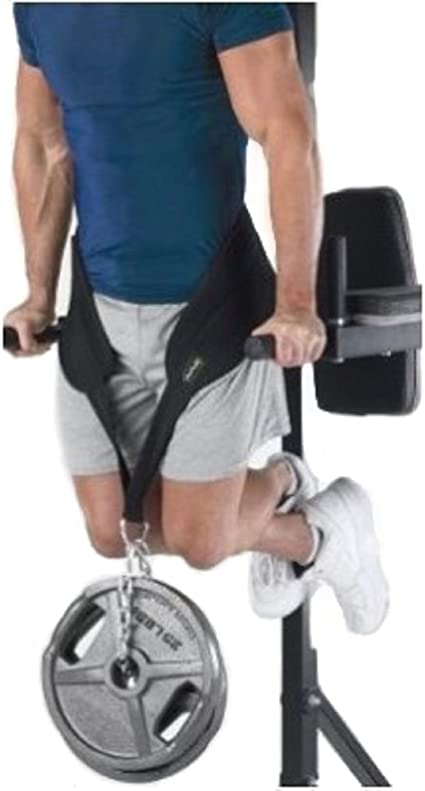 IGNITE Dipping Belt Dip Weight Lifting Body Building Chain Exercise Gym Training