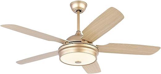 Luz del ventilador de techo FANJIANI Ventilador de Techo Luz de ...
