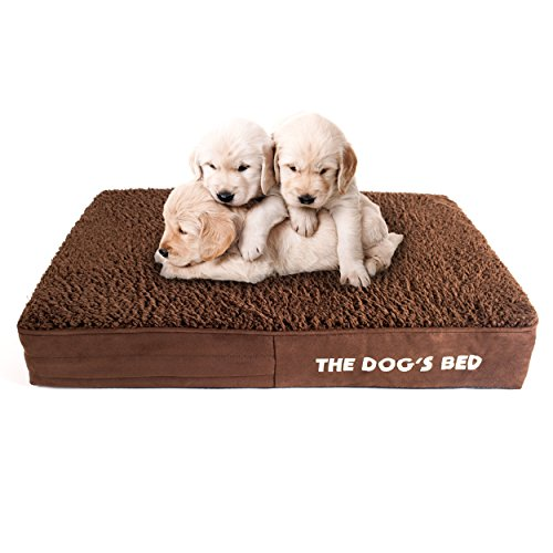 The Dog's Bed Orthopedic Dog Bed Small Brown Plush 28x19, Premium Memory Foam, Pain Relief for Arthritis, Hip & Elbow Dysplasia, Post Surgery, Lameness, Supportive, Calming, Waterproof Washable Cover