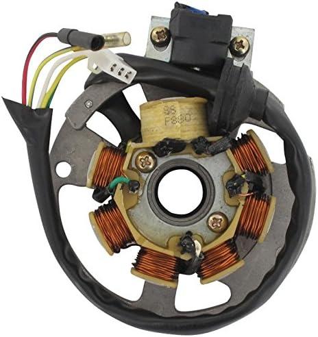2Takt 50 ccm liegender Minarelli Motor AC//LC 1E40QMB Motowell Magnet Xfight-Parts Ankerplatte mit Pick-up aussenliegend 5 Kabel 1x3 und 2x1 Pol