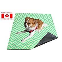 20 X 20 - Premium Waterproof Reusable / Washable Medium Dog Cat / Puppy Training Travel Pee Pads (Green Zig-Zag)