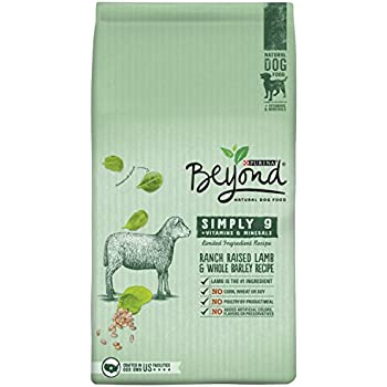 Purina Beyond Natural Dog Food Review