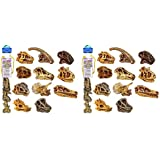 Safari 2 Sets of 11 Ltd Dinosaur Skulls TOOB bundled by Maven Gifts