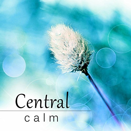 central calm relaxation music to chill out piano jazz collection